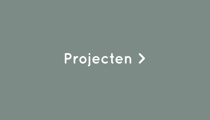 projecten-button